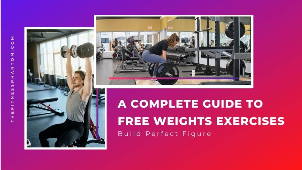 A COMPLETE GUIDE TO FREE WEIGHTS EXERCISES