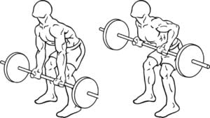 Reverse Barbell Bent Over