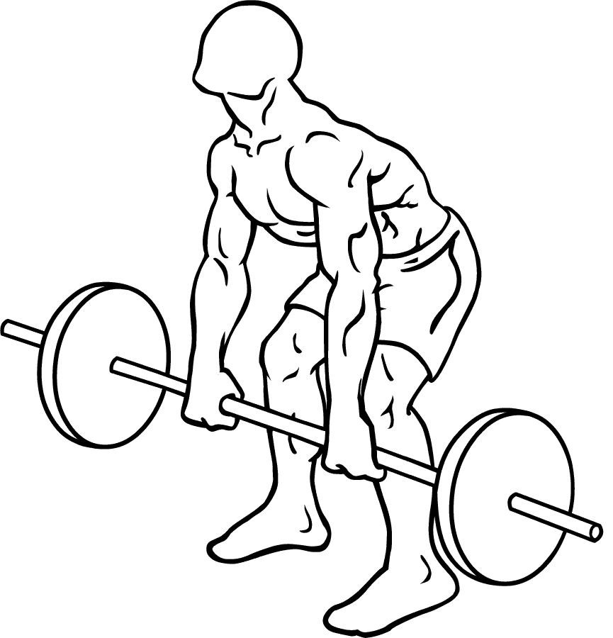 one of the best exercise is Barbell Deadlift for complete body and This free weights exercise gives major benefits to your to your whole body.