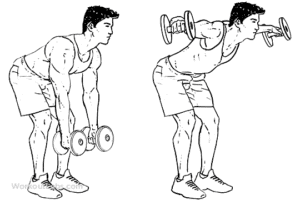 One of the beneficial free weights exercises is Bent-Over Dumbbell Lateral Raise