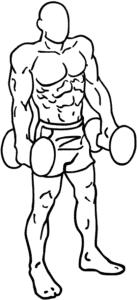 Shoulder shrug