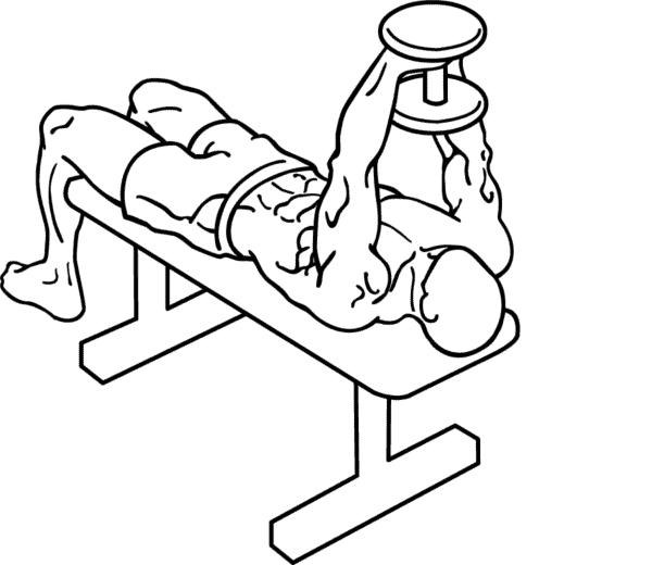 dumbbell upper body workout shoulder