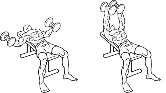 Flat Dumbbell fly Floor is one of the best exercises to build your Chest with Dumbbell