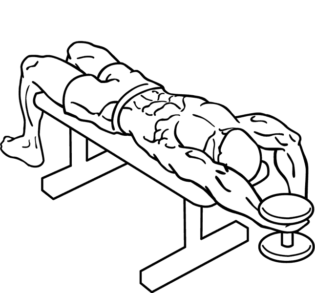 Dumbbell Compound Exercises
