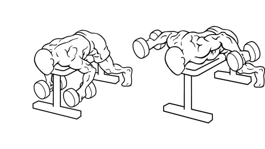 Dumbbell-lying-shoulder-extention