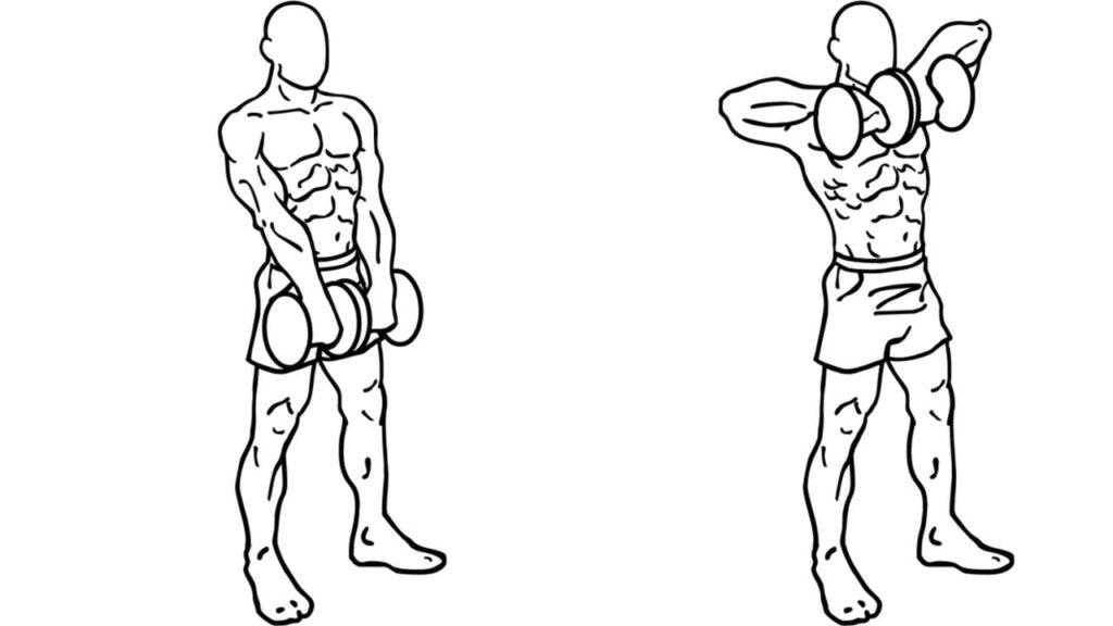 upper body shoulder workout with dumbbells