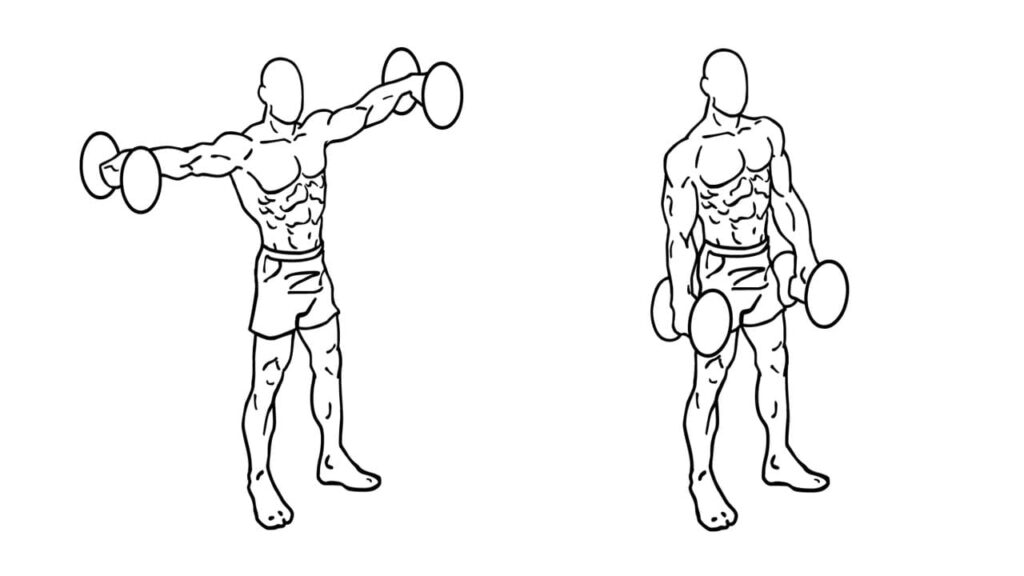 upper body dumbbell shoulder workout without bench