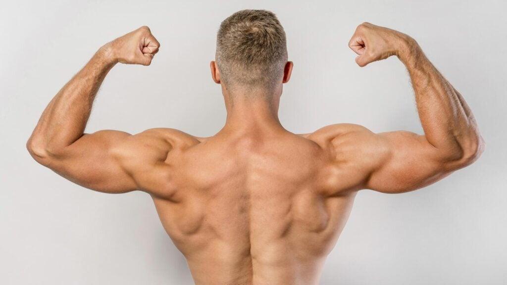 best dumbbell exercises for back muscles