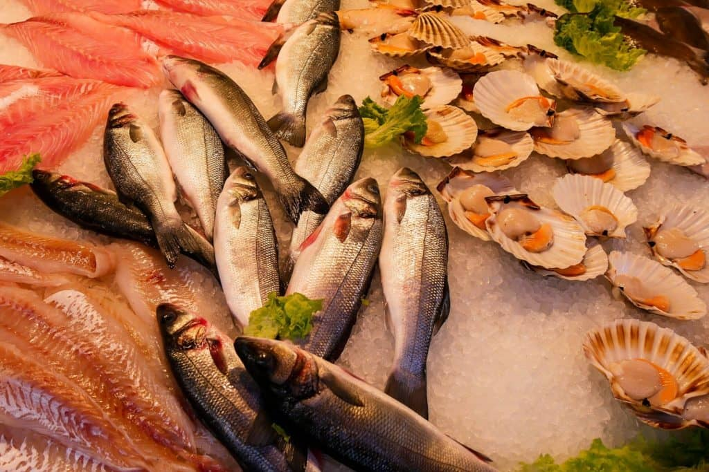 seafood are low calorie high protein foods that give you feeling of fullness and reduce hunger