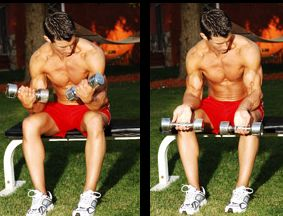 Wrist Workout with dumbbells
