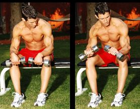 dumbbell wrist workout