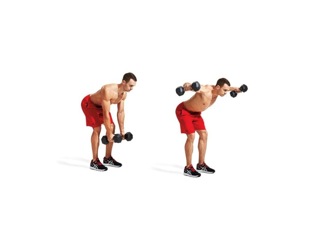 Upper body dumbbell exercise for back