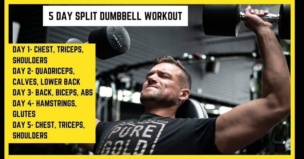 5 Day Split Dumbbell Workout