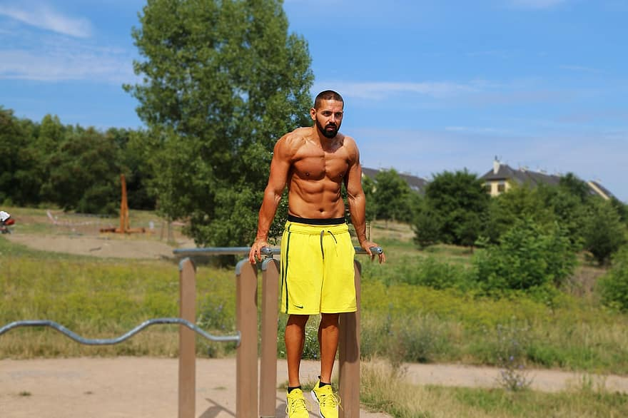 How to do dips workout at home and What Muscles Worked During Dips Exercises