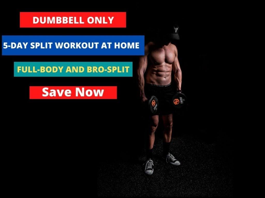 5 Day Dumbbell Workout Split