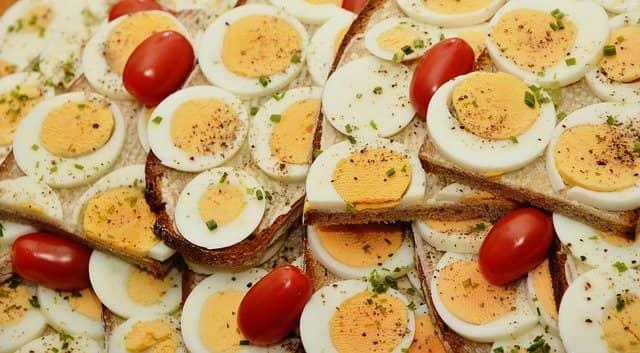 Highest Protein Weight Gain food