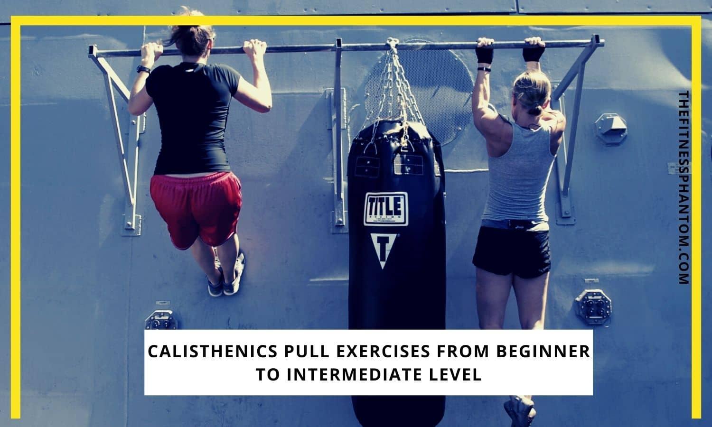 Calisthenics Pull Exercises