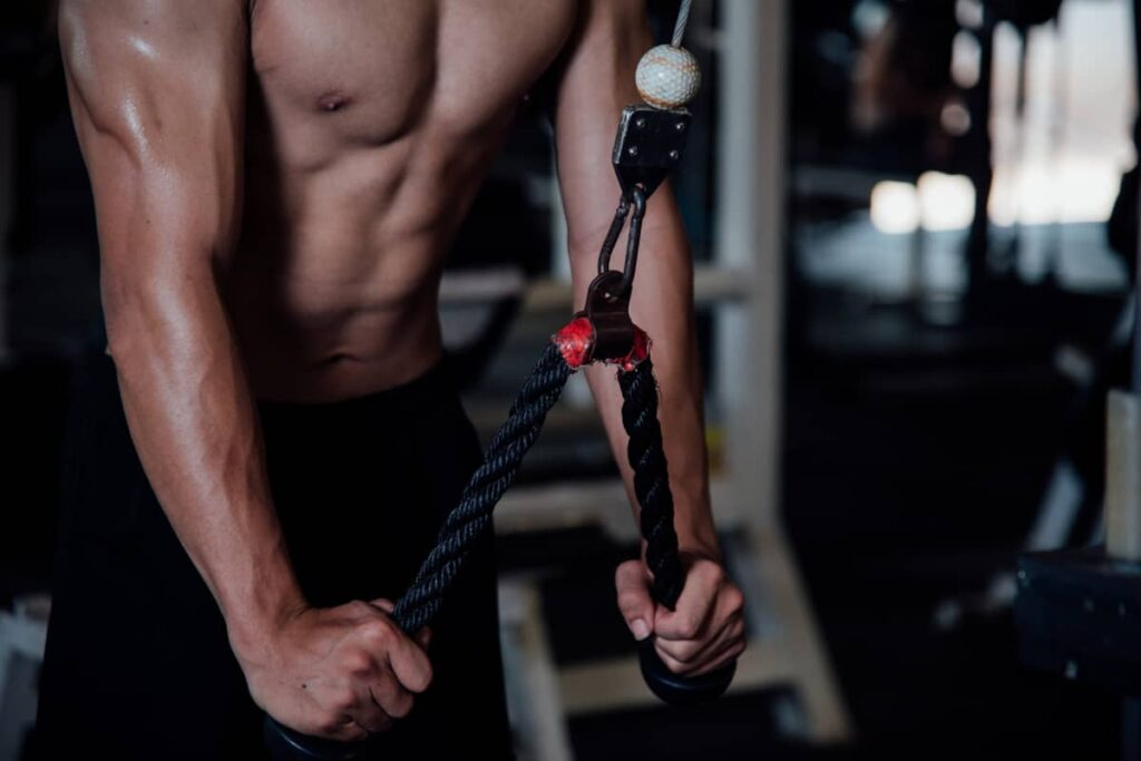 biceps and triceps workout at gym pdf