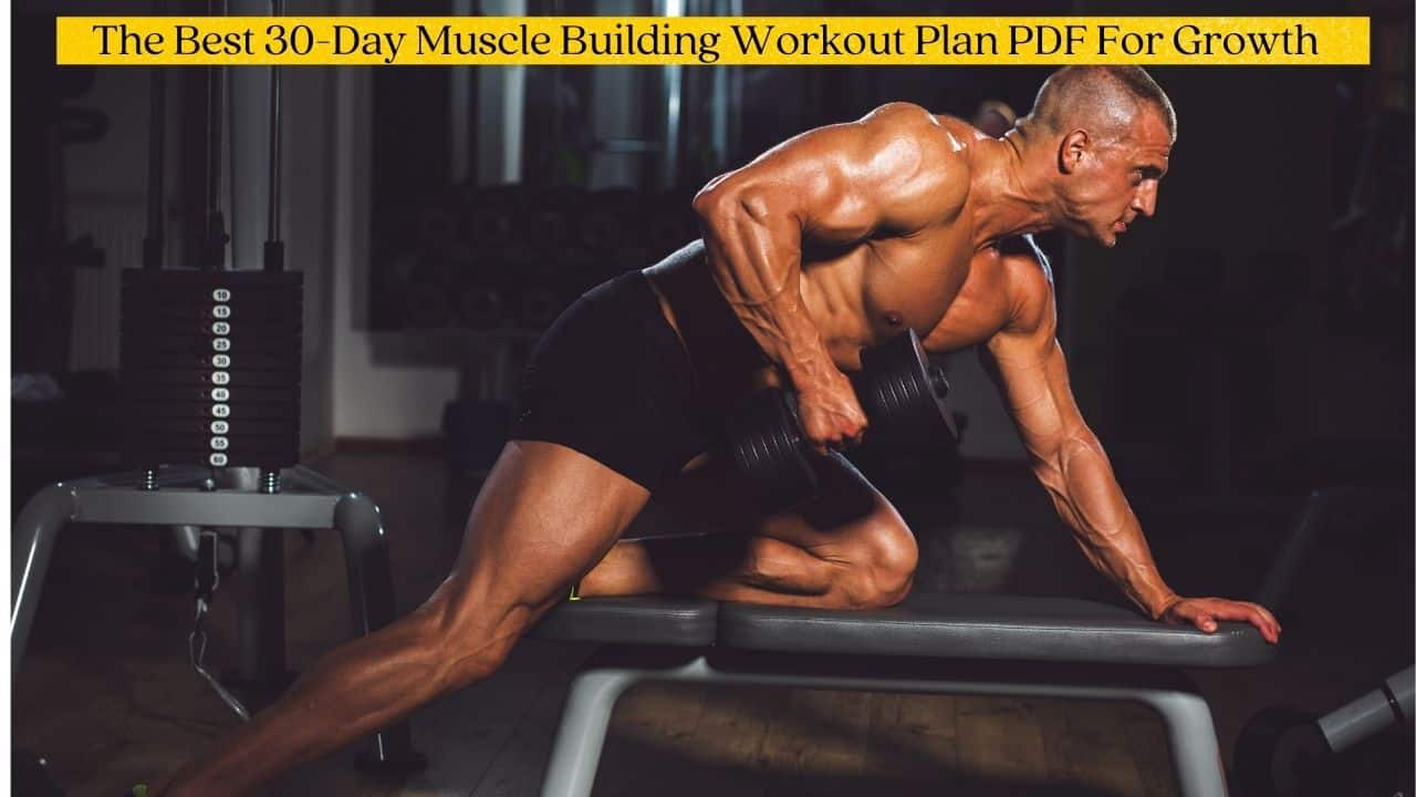 30 Day Muscle Building Workout Plan PDF